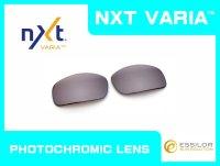 X-SQUARED NXT®調光レンズ フラッシュコパー
