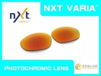 X-METAL XX NXT®調光レンズ ファイア