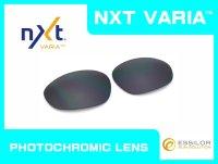 X-METAL XX  NXT®調光レンズ フラッシュブラック