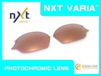 ロメオ2 NXT®調光レンズ ピンキーゴールド