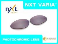 ペニー NXT®調光レンズ フラッシュコパー