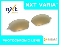 ロメオ2 NXT®調光レンズ ゴールドヴァリア