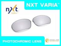 ハーフエックス NXT®調光レンズ チタニウムクリア