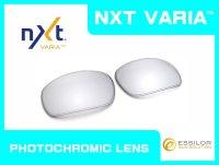 BADMAN  NXT®調光レンズ チタニウムクリア