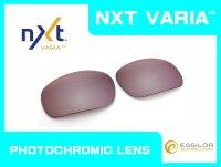 BADMAN  NXT®調光レンズ フラッシュコパー
